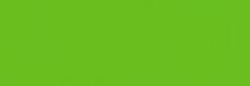 Studios Vert Prana Logo